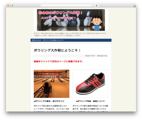 Best WordPress template Simplicity2 - bowling-lesson.com