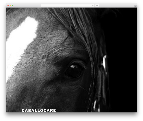 Twenty Seventeen WordPress template free download - caballocare.com