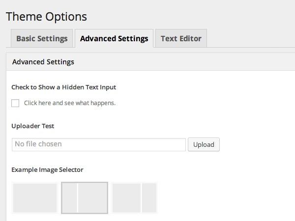 WordPress theme Options Framework Theme