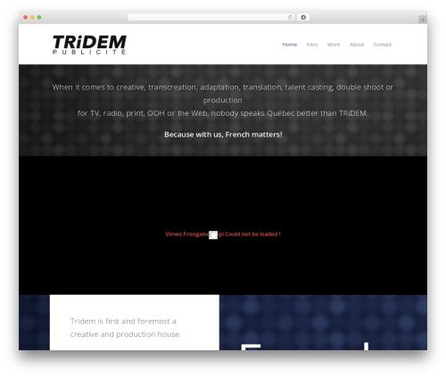 Best WordPress theme Salient - tridem.net