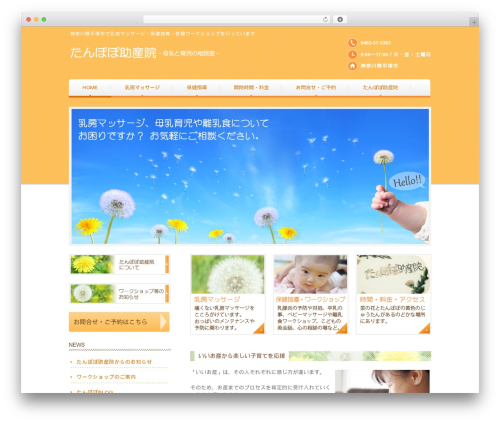 responsive_031 premium WordPress theme - tanpopo-baby.com
