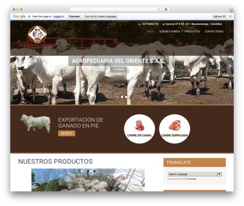 SKT Coffee WordPress template free download - agropecuariadeloriente.com