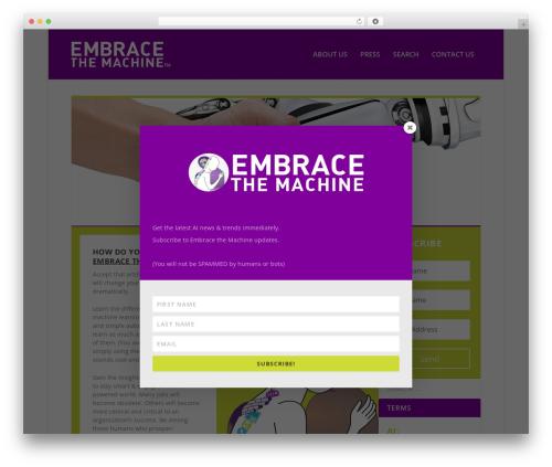 WordPress template Extra-child - embracethemachine.com