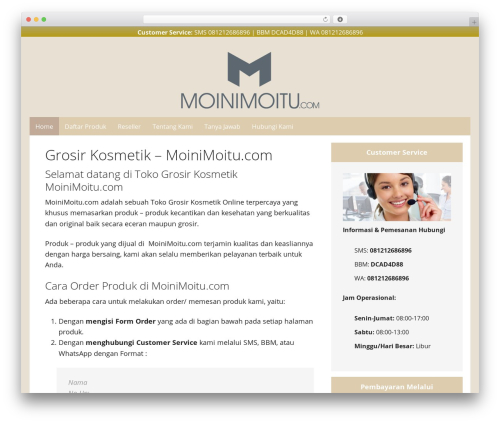 Dynamik-Gen best WordPress template - moinimoitu.com