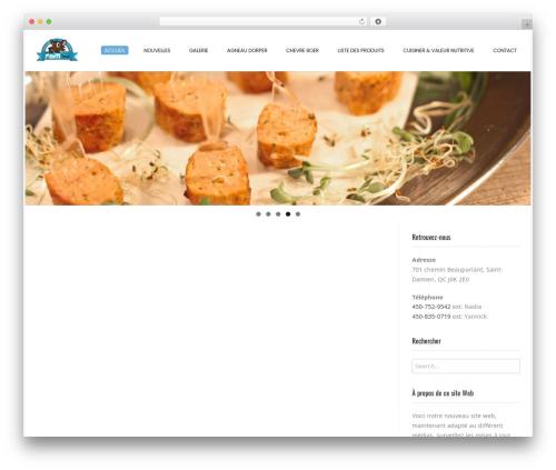 Conica free WordPress theme - unefaimdeloup.ca