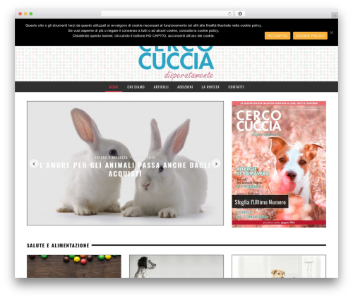 Best WordPress template Yorkpress - cercocucciadisperatamente.com