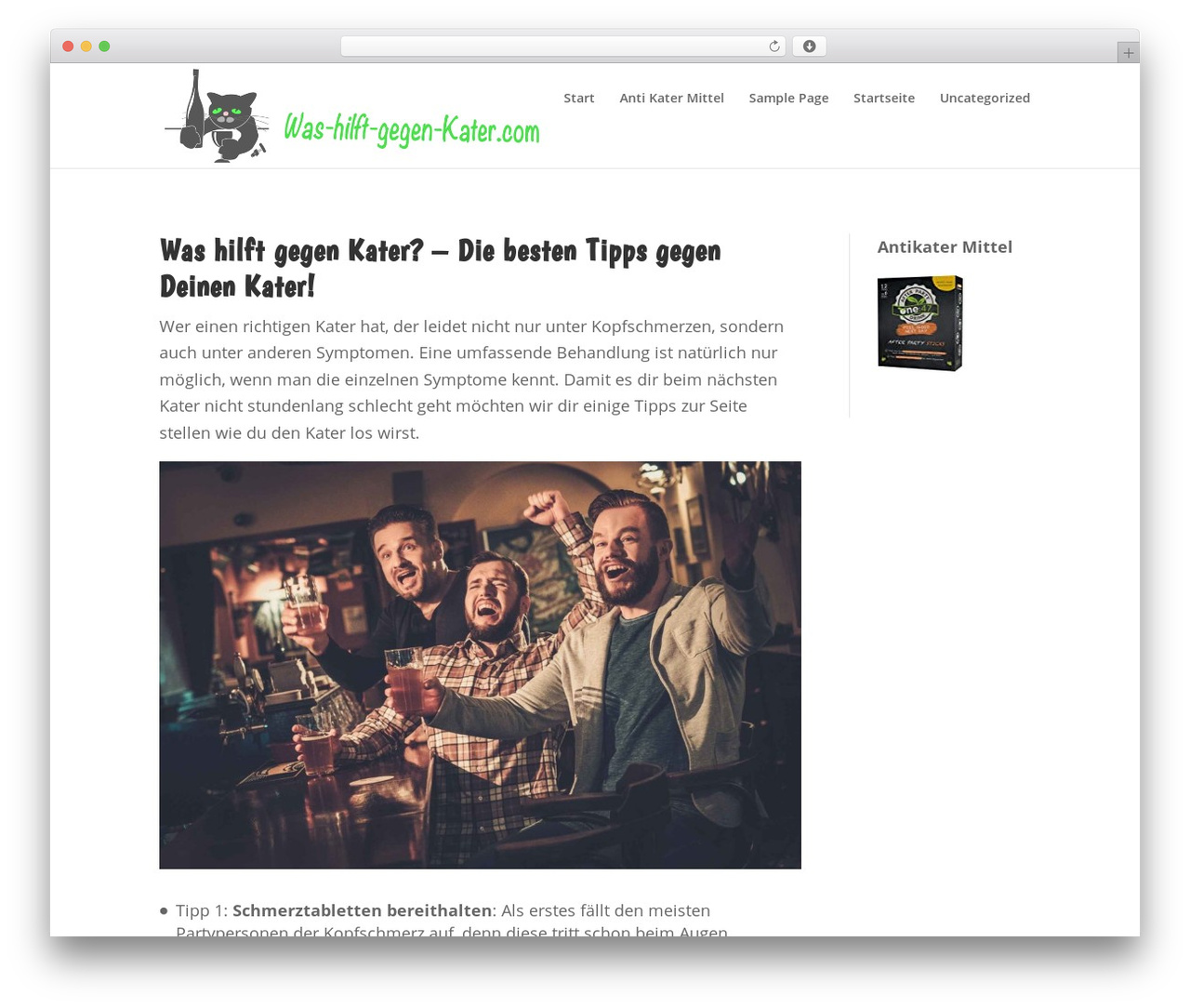 Child Theme for Divi WordPress theme - was-hilft-gegen-kater.com