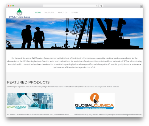 WP Omnia top WordPress theme - owe-group.com