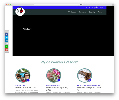 WordPress all_around plugin - tammyvitale.com