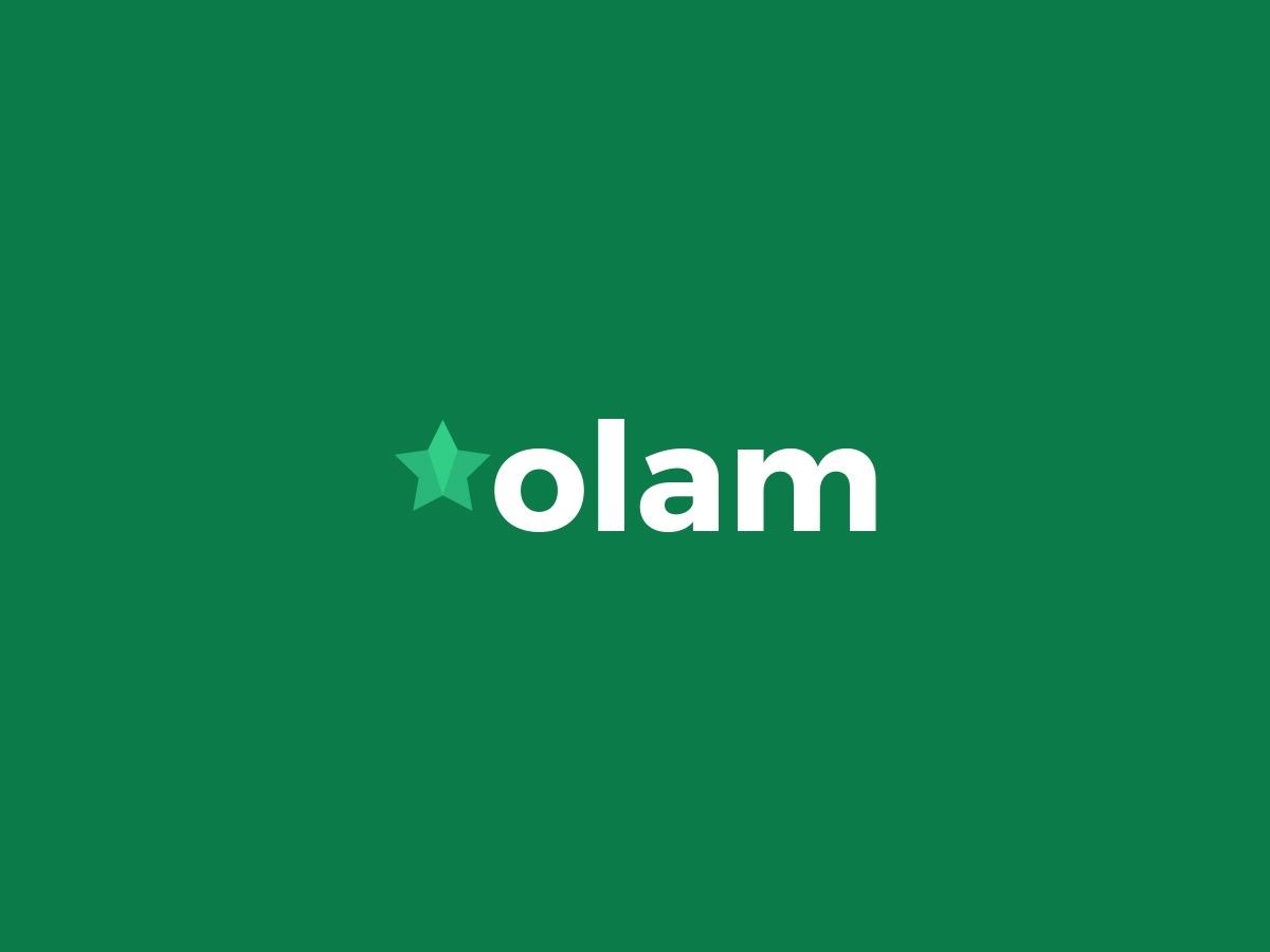 Olam WP theme