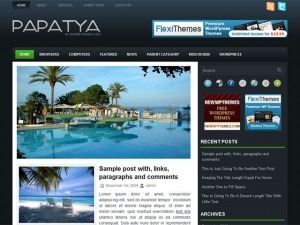 Papatya WordPress theme design