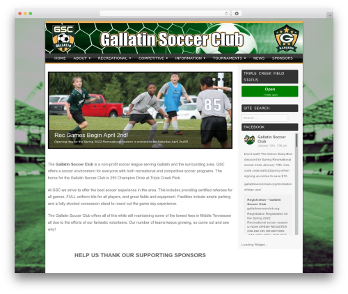 Sporty WordPress theme free download - thegallatinsoccer.org