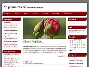 WordPress theme Premium Series