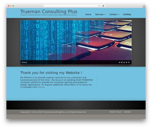 WordPress theme Striking MultiFlex & Ecommerce Responsive WordPress Theme - truemanconsultingplus.ca