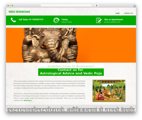 Sanitorium best free WordPress theme - vedicdevarchan.com