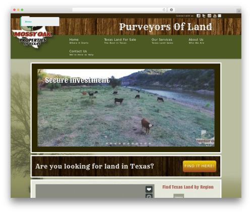 WordPress template Modular - wisecountylandforsale.com
