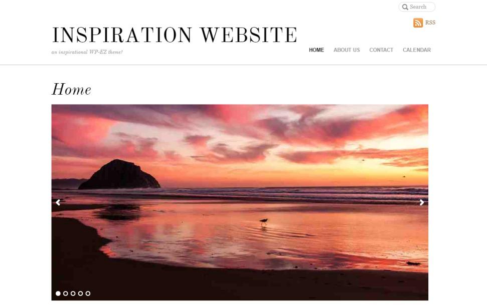 Agency WordPress theme design