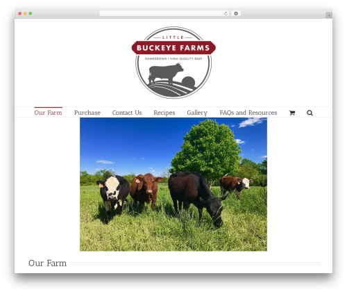 Avada template WordPress - littlebuckeyefarms.com