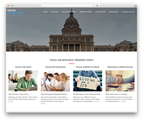 WordPress theme Avion - texasjobresource.com