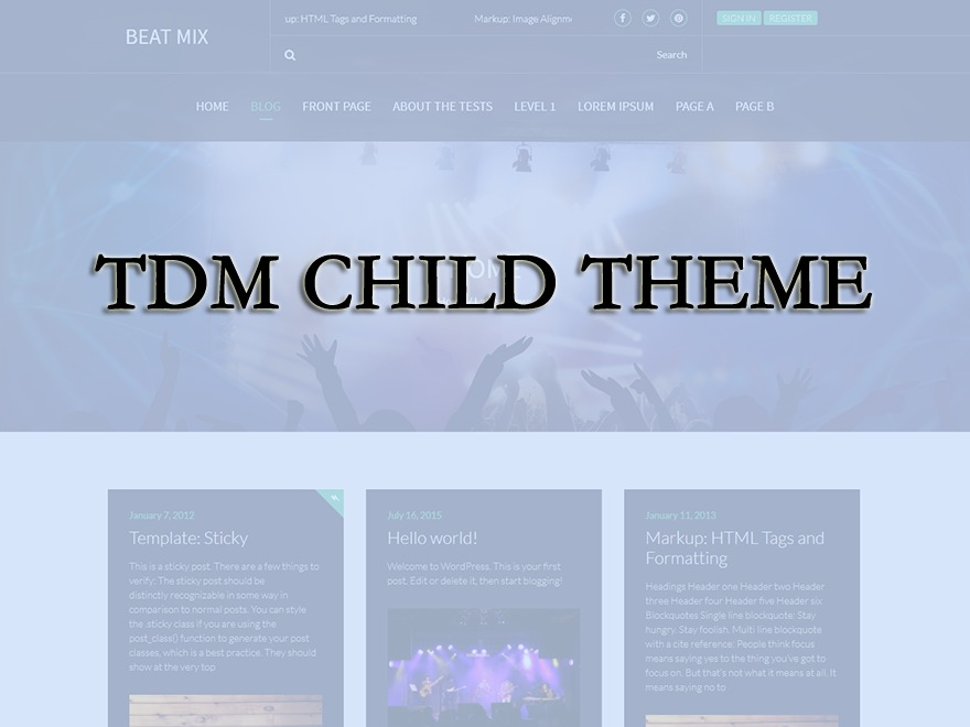 Beat Mix Lite Child WordPress blog template