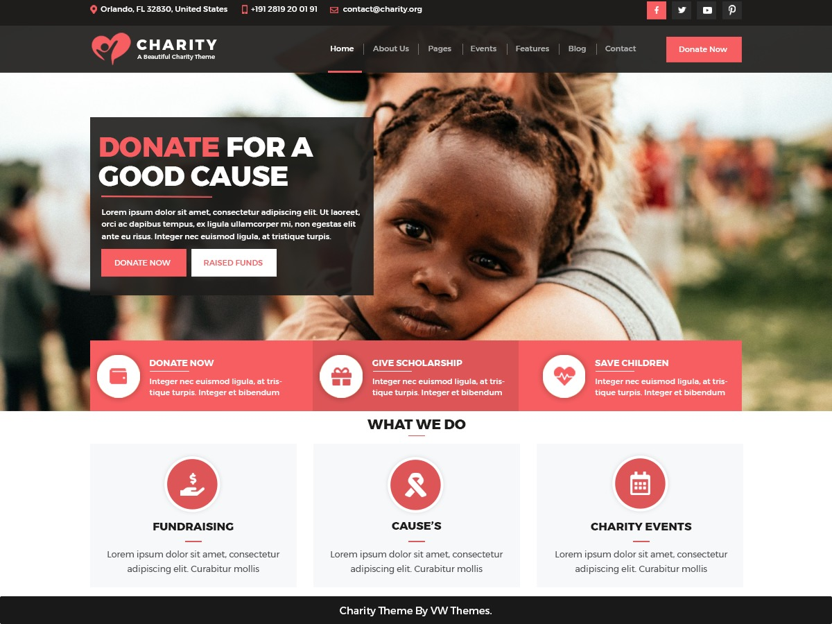 VW Charity NGO WordPress blog template