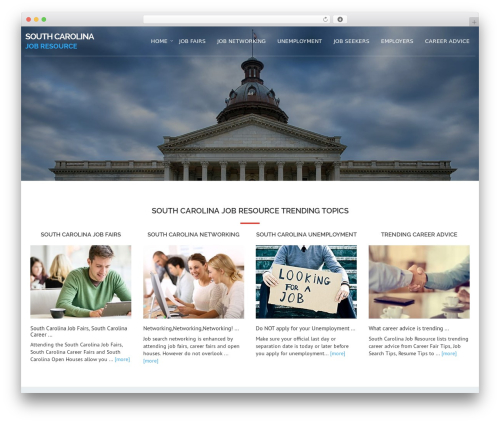 WordPress theme Avion - southcarolinajobresource.com