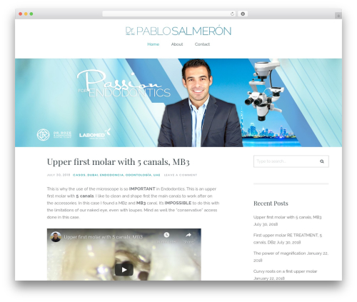 Carbis best WordPress theme - pablosalmeron.com