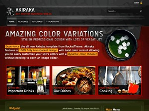 Akiraka Wordpress Theme WP template