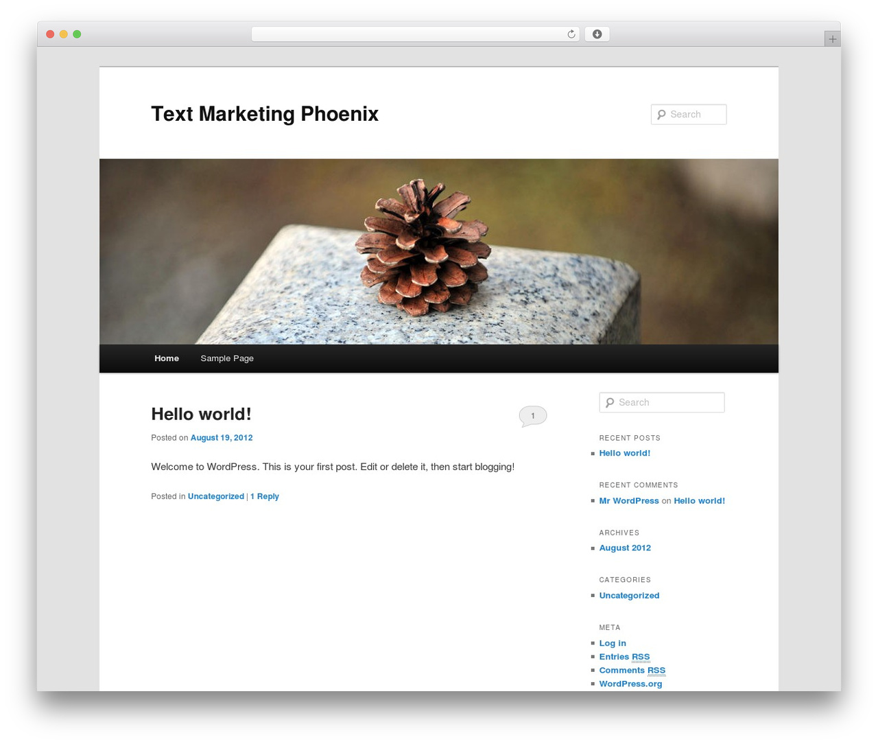 WordPress theme Twenty Eleven - textmarketingphoenix.com