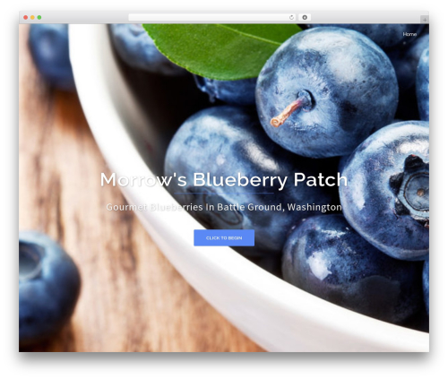 Sydney WordPress template free download - morrowblueberries.com