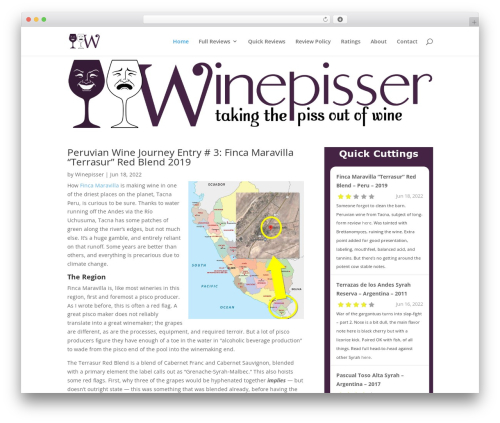 Theme WordPress Divi - winepisser.com