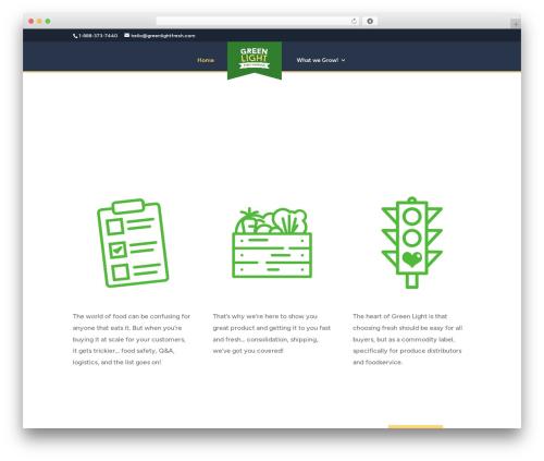 Divi premium WordPress theme - greenlightfresh.com