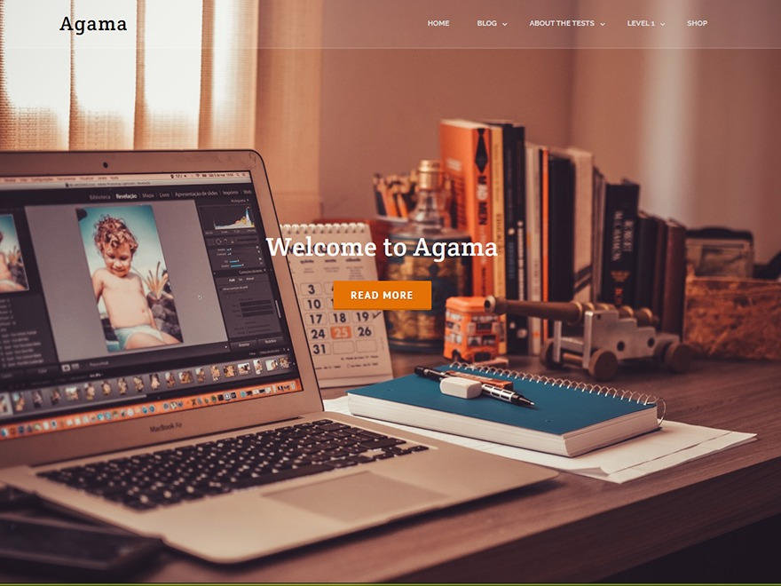 Agama-au personal blog WordPress theme