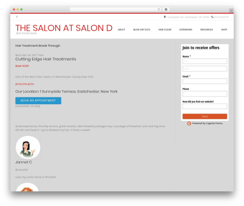 Conica WordPress theme free download - thesalonatsalond.com