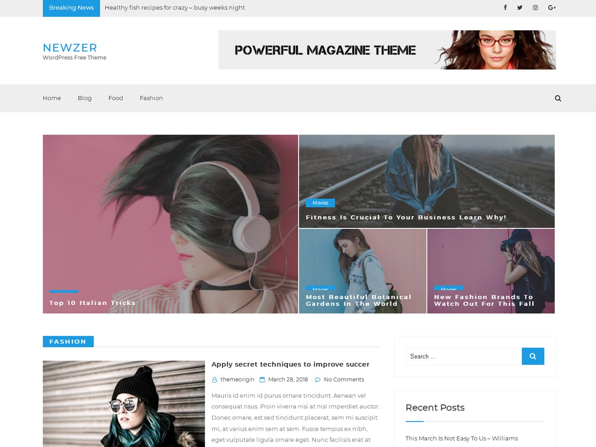 Newzer WordPress magazine theme