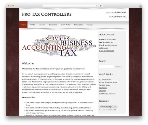 Customized business WordPress theme - protaxcontrollers.com