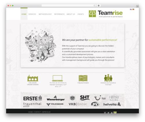 WordPress theme Rover - teamrise.at