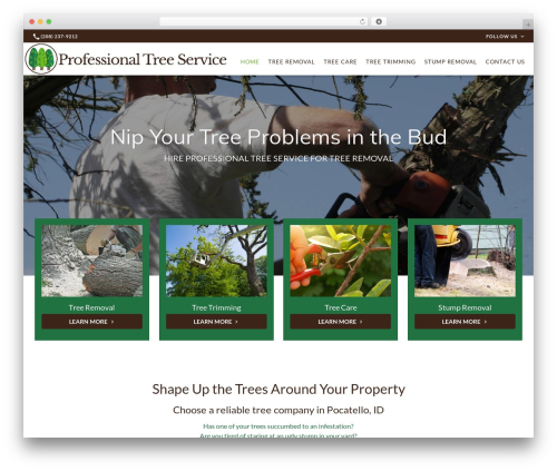 WP template Beacon Theme - professionaltreeserviceid.com
