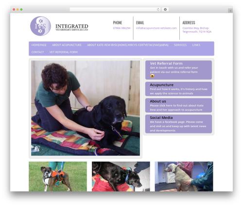 Chiro Pro WordPress template free - acupuncture-vetskate.com
