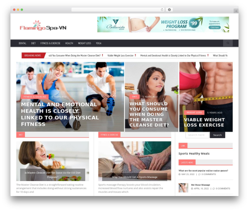 Novomag Premium Theme [Shared By themes24x7.com] WordPress blog template - flamingospavn.com