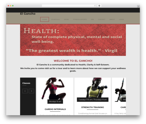WP template Fitness - elgancho.com