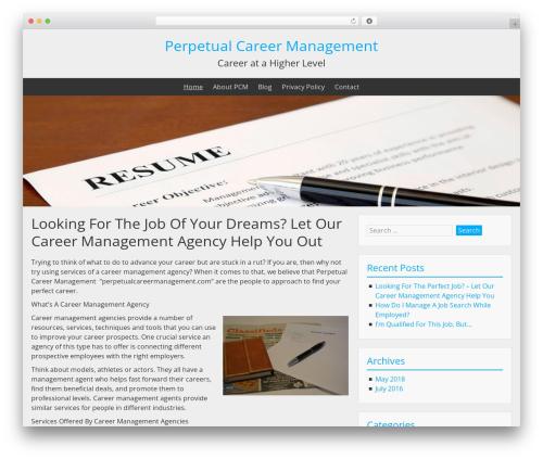 BlueGray template WordPress - perpetualcareermanagement.com