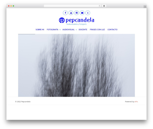 WordPress theme ePix - pepcandela.com