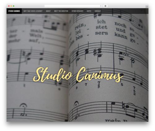 Arcade Basic free WordPress theme - studiocanimus.com