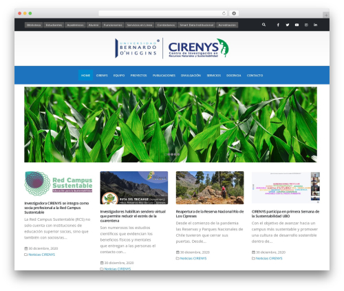 WordPress website template Porto - cirenys.cl