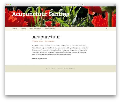 Twenty Thirteen free website theme - acupunctuursanting.nl