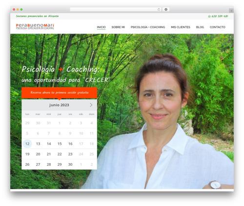 WordPress website template Entrepreneur - pepabueno.es