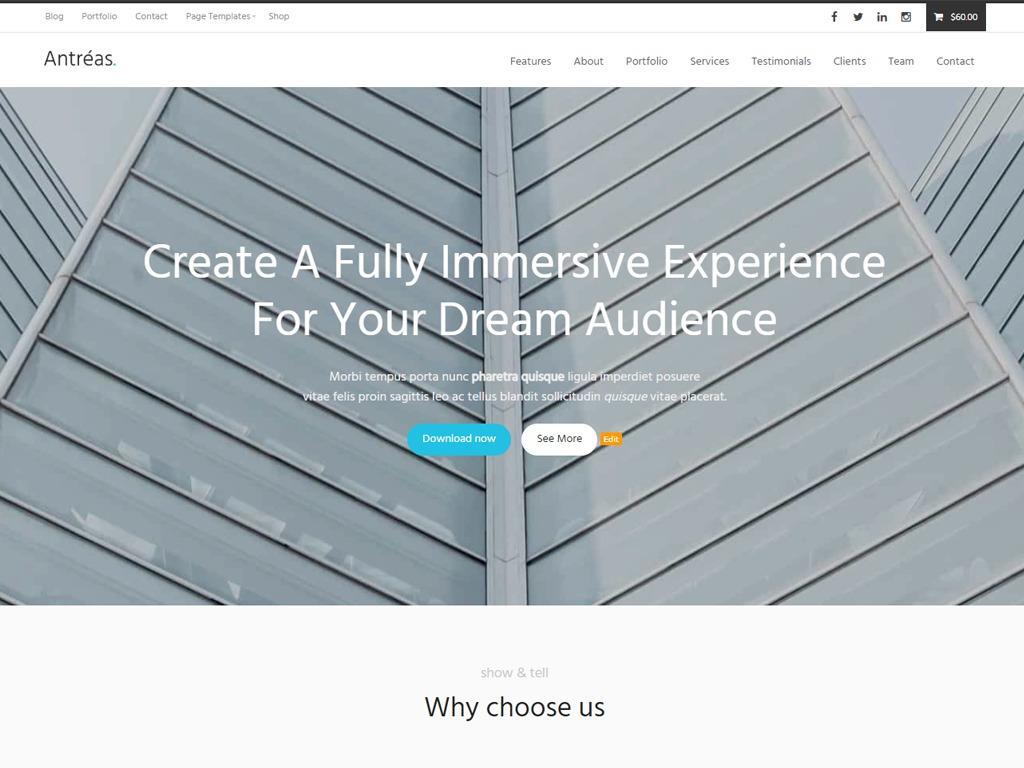 Antreas business WordPress theme