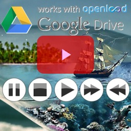 Free WordPress GD Player For Google Drive Videos By: Video JS plugin by inGolin.com