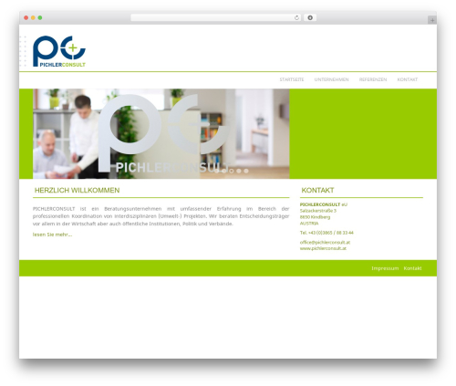 Template WordPress Professional Plus - pichlerconsult.at